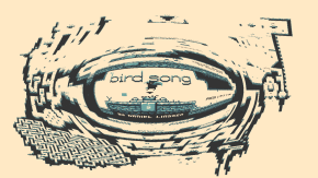 Birdsong is Screen-Sprawling Metroidvania