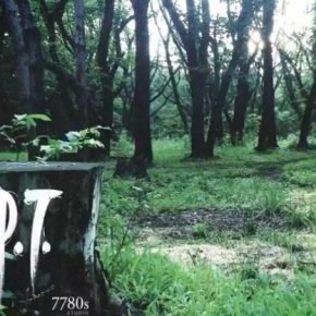 Game of the Year 2014: #10 –P.T.
